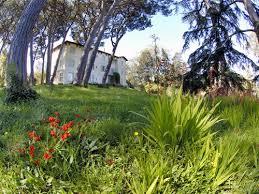 villa thuriet photo