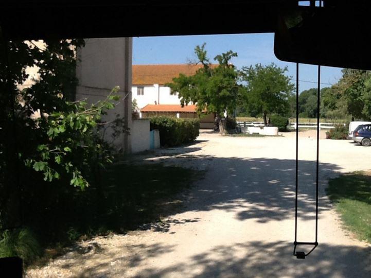 Sortie Arles2015 (10)